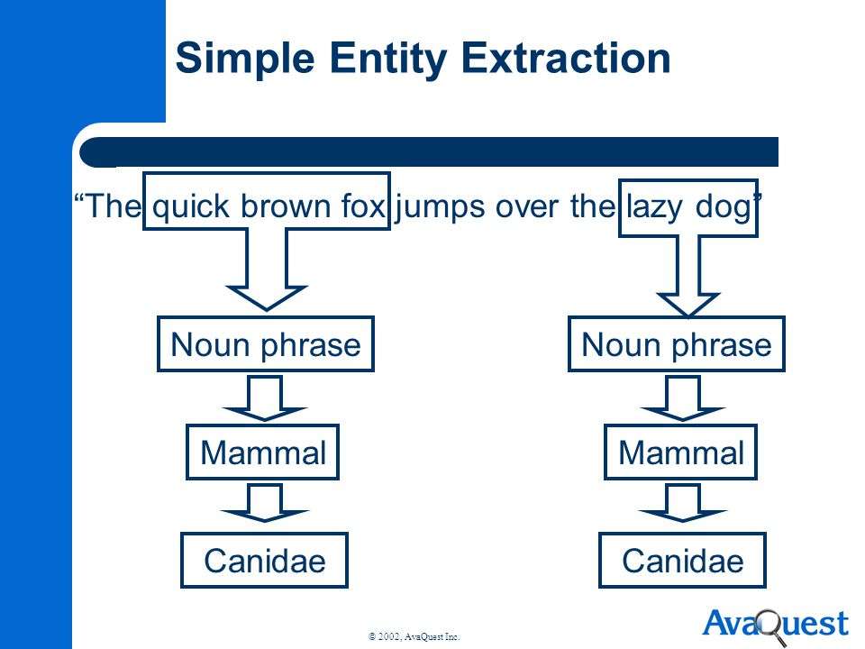 Simple Entity Extraction