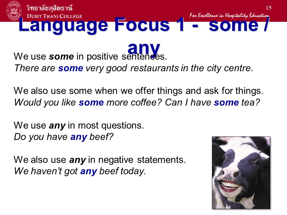 Language Focus 1 - some / any