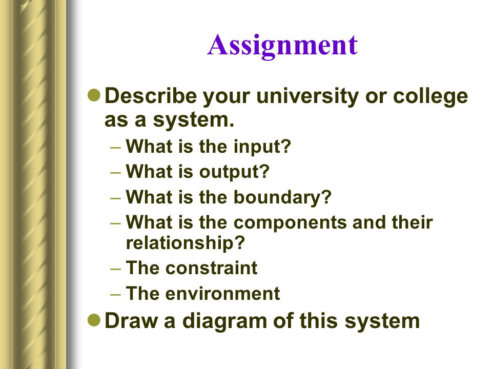 Assignment Describe your university or college as a system.