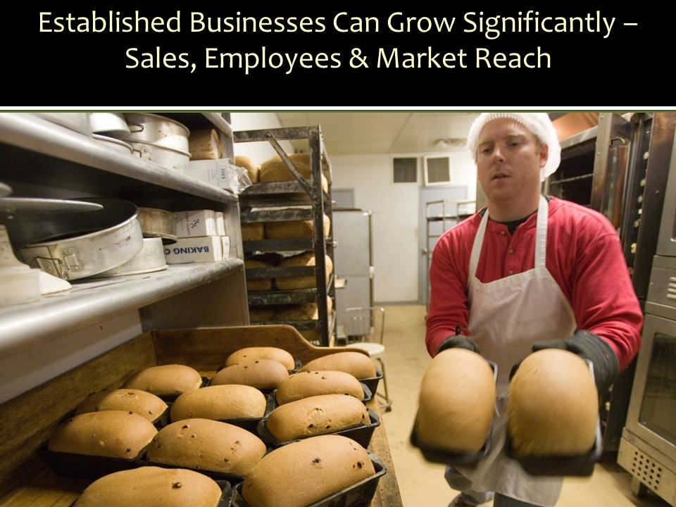 Established Businesses Can Grow Significantly – Sales, Employees & Market Reach