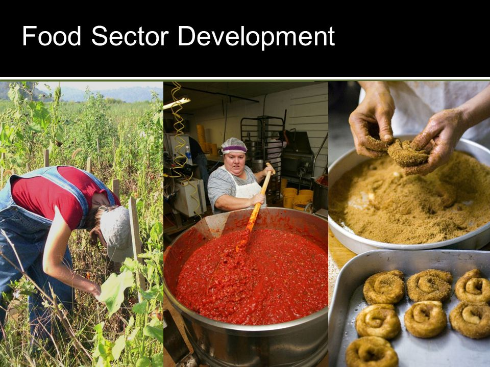 Food Sector Development