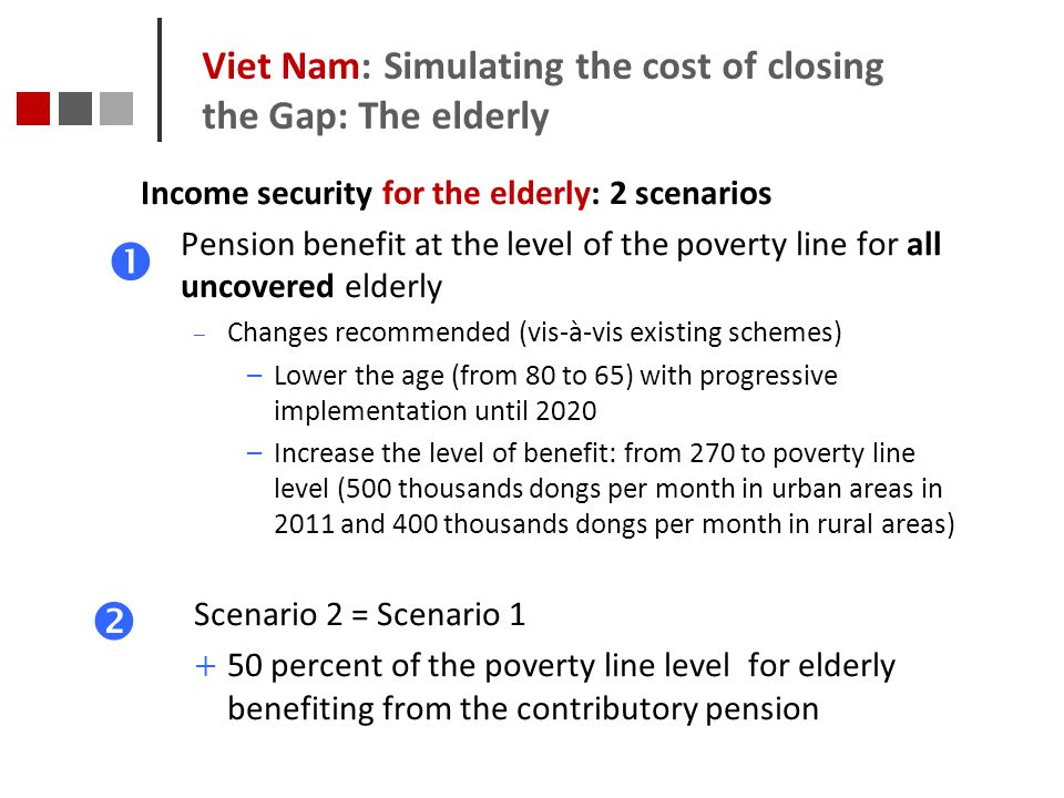 Viet Nam: Simulating the cost of closing the Gap: The elderly