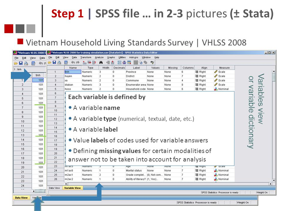 Step 1 | SPSS file … in 2-3 pictures (± Stata)