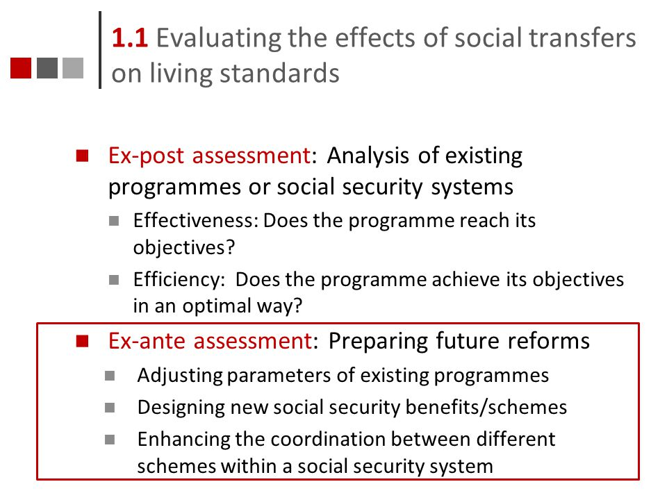 1.1 Evaluating the effects of social transfers on living standards