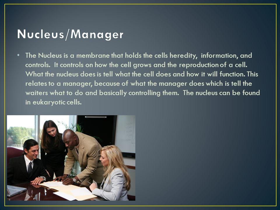 Nucleus/Manager