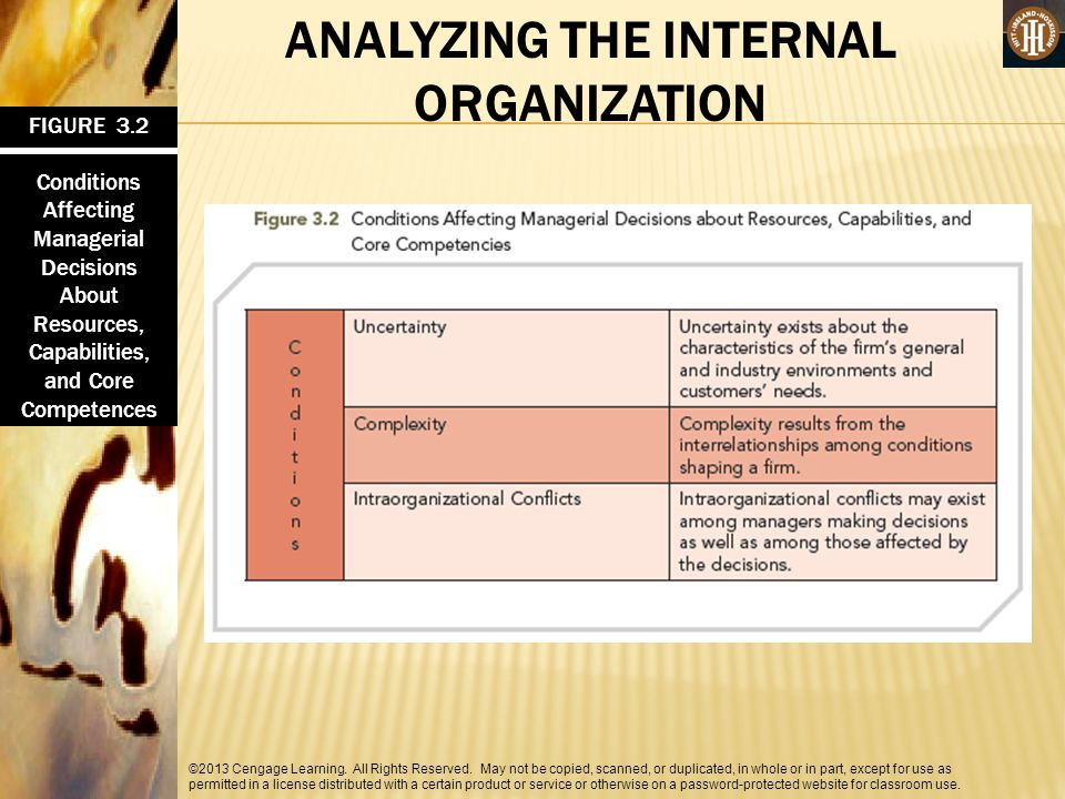 ANALYZING THE INTERNAL ORGANIZATION