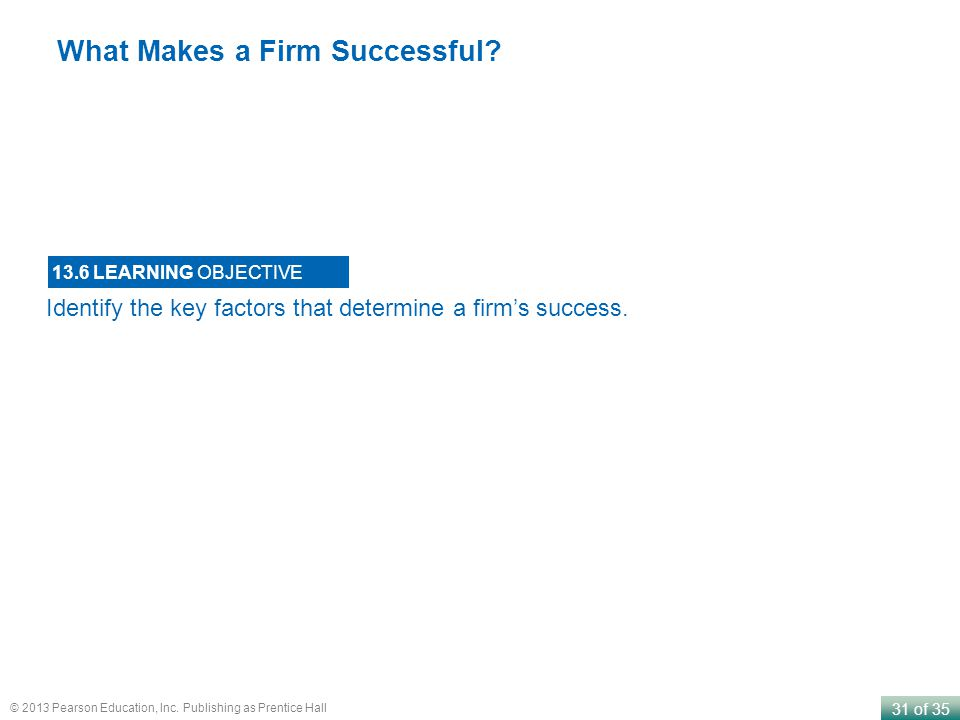 What Makes a Firm Successful
