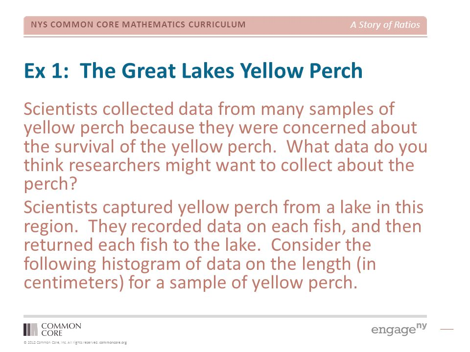 Ex 1: The Great Lakes Yellow Perch