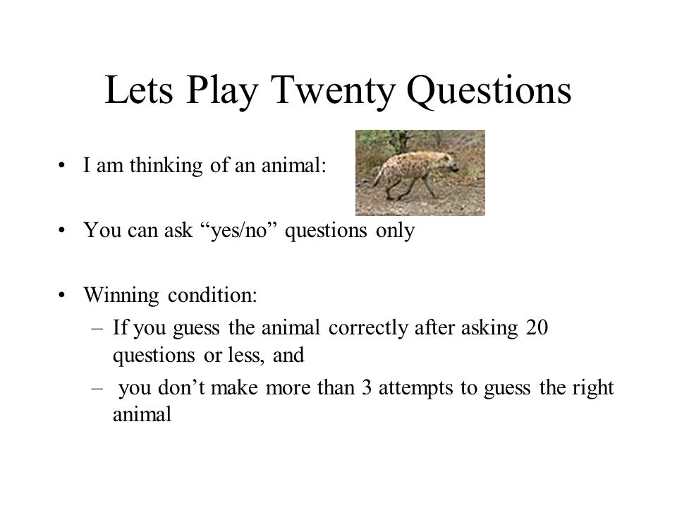Lets Play Twenty Questions