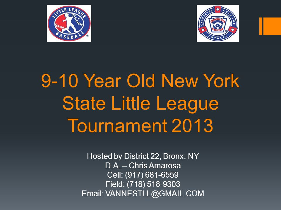 9-10 Year Old New York State Little League Tournament 2013