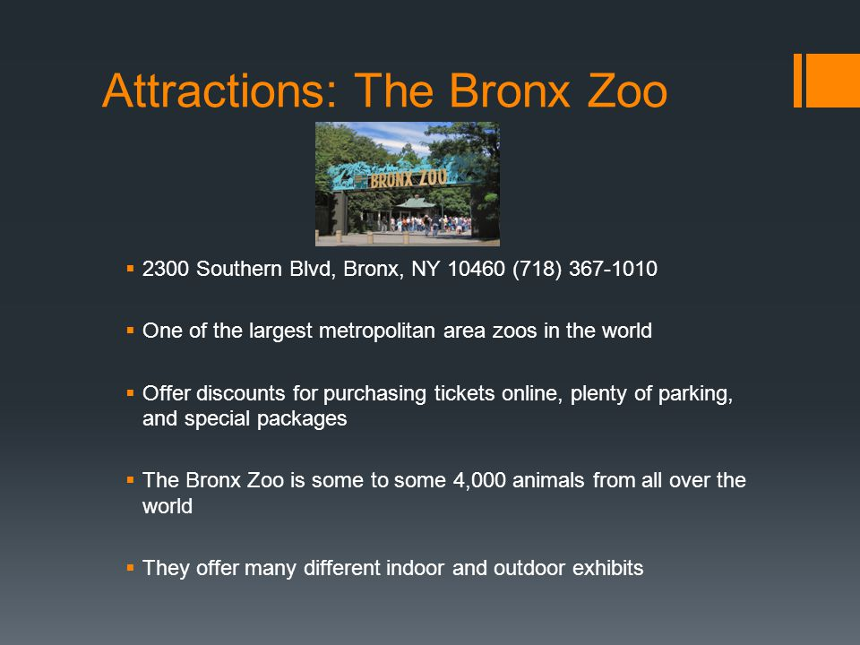 Attractions: The Bronx Zoo