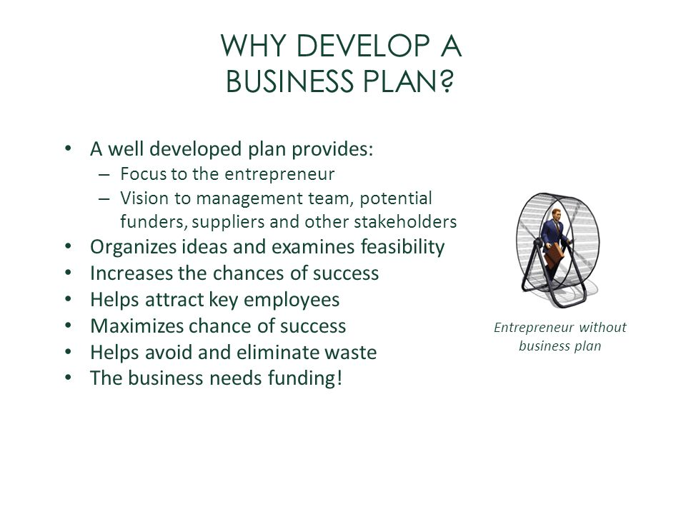 WHY DEVELOP A BUSINESS PLAN