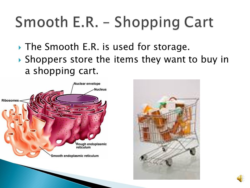 Smooth E.R. – Shopping Cart