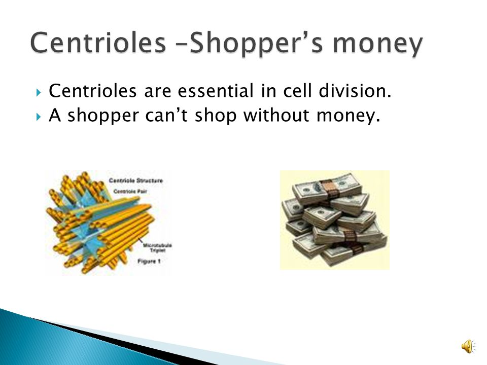 Centrioles –Shopper's money
