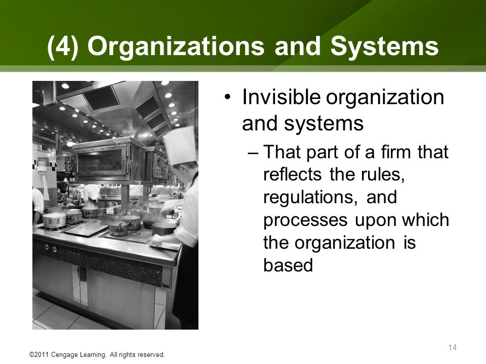 (4) Organizations and Systems