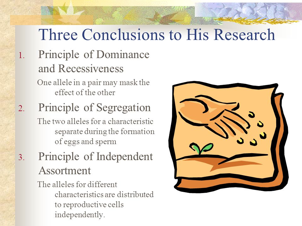 Three Conclusions to His Research