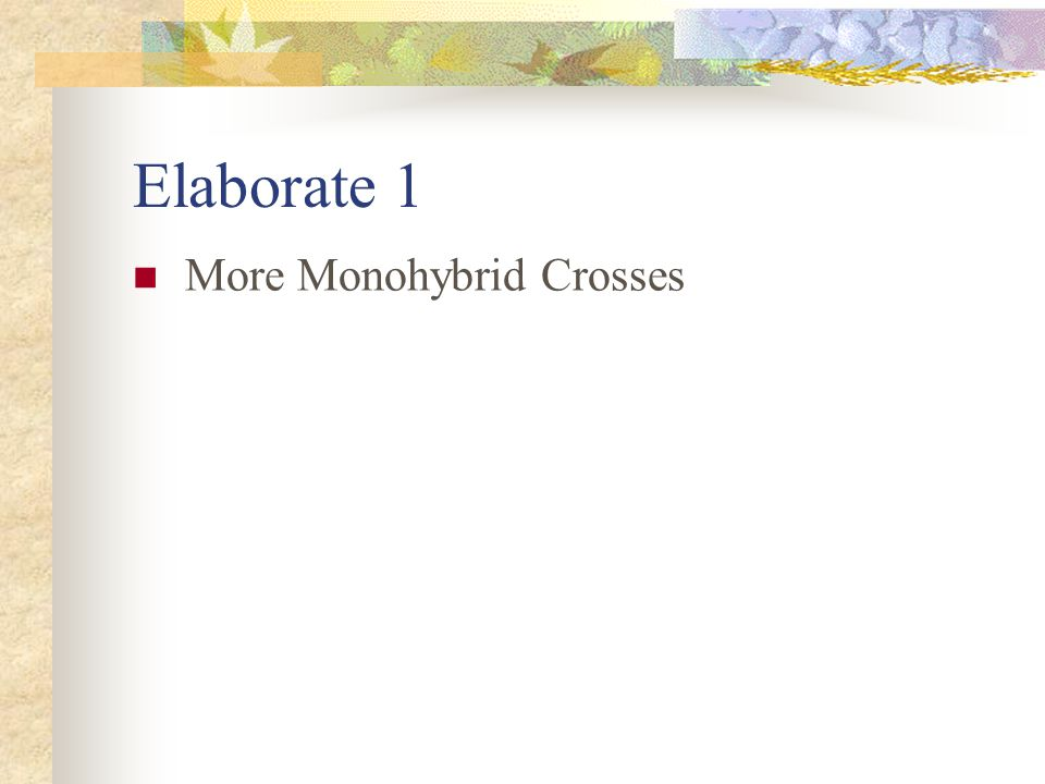 Elaborate 1 More Monohybrid Crosses
