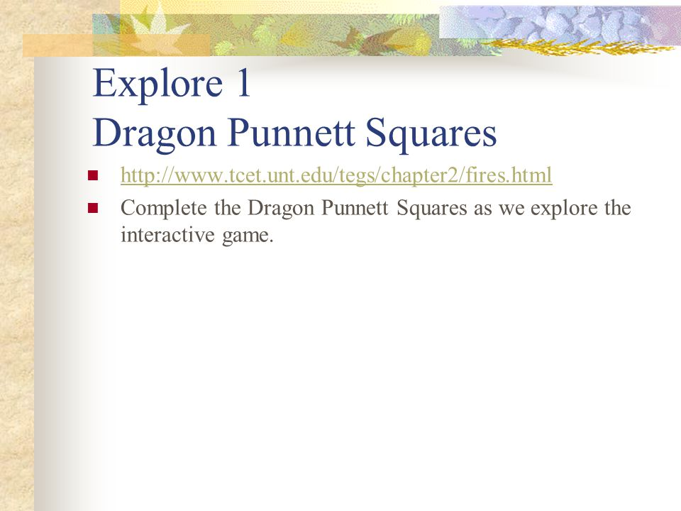 Explore 1 Dragon Punnett Squares