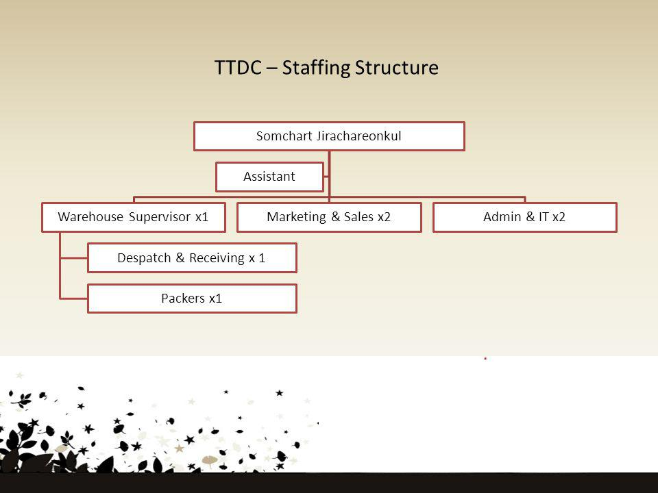 TTDC – Staffing Structure