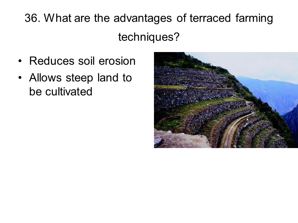 36. What are the advantages of terraced farming techniques