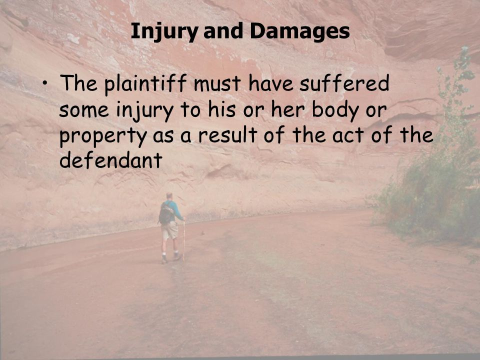 Injury and Damages The plaintiff must have suffered some injury to his or her body or property as a result of the act of the defendant.