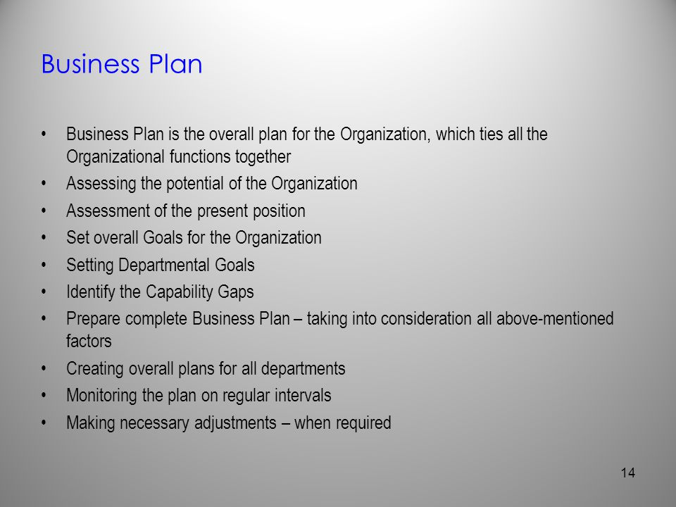 Business Plan Business Plan is the overall plan for the Organization, which ties all the Organizational functions together.