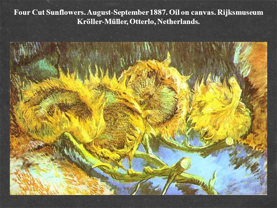 Four Cut Sunflowers. August-September 1887. Oil on canvas