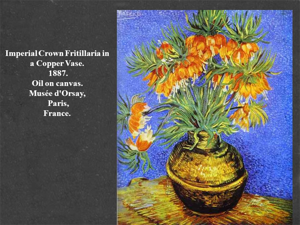 Imperial Crown Fritillaria in a Copper Vase. 1887. Oil on canvas