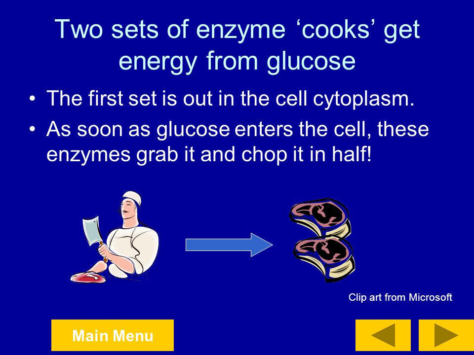 Two sets of enzyme 'cooks' get energy from glucose