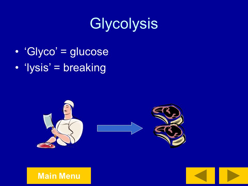 Glycolysis 'Glyco' = glucose 'lysis' = breaking
