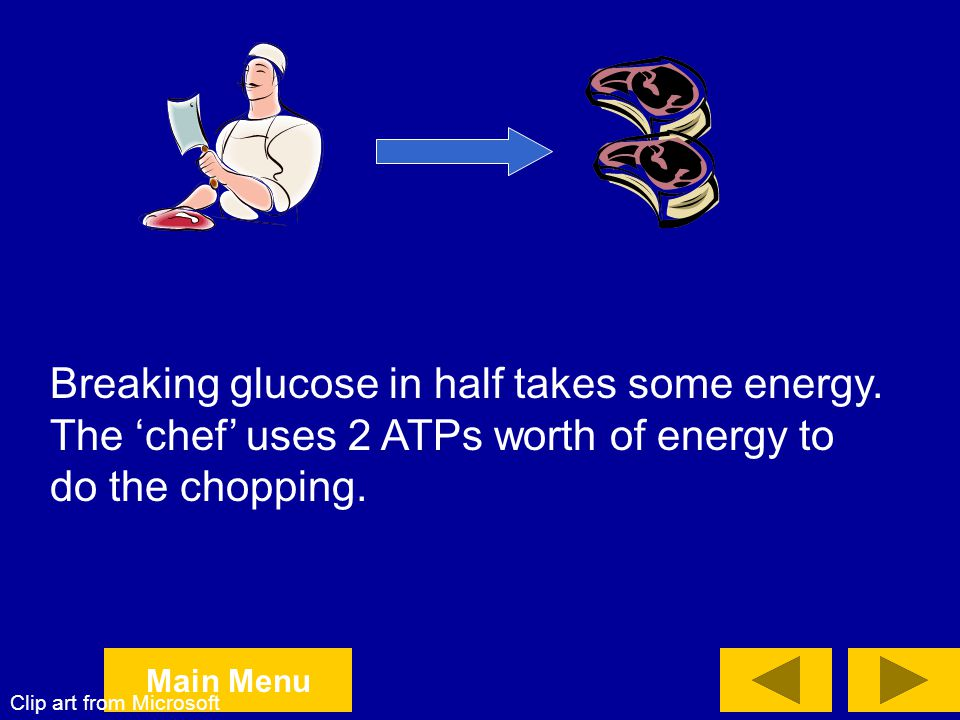 Breaking glucose in half takes some energy