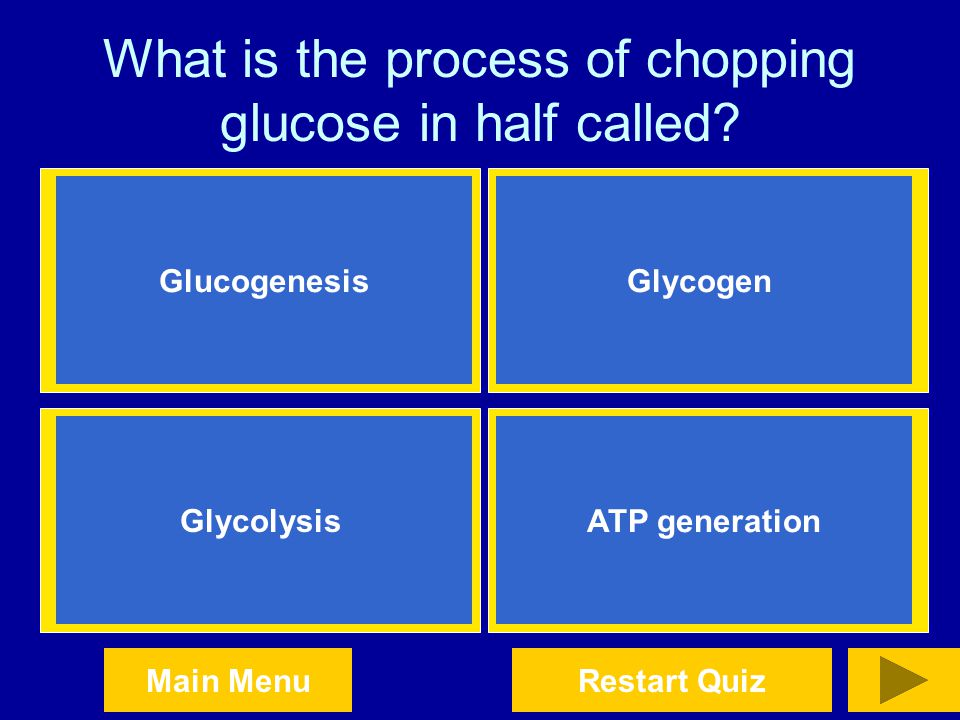 What is the process of chopping glucose in half called
