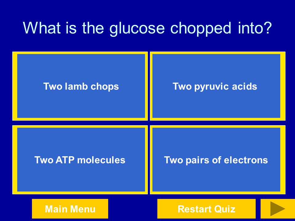 What is the glucose chopped into