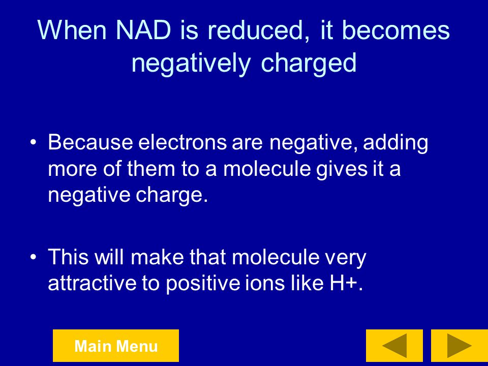 When NAD is reduced, it becomes negatively charged