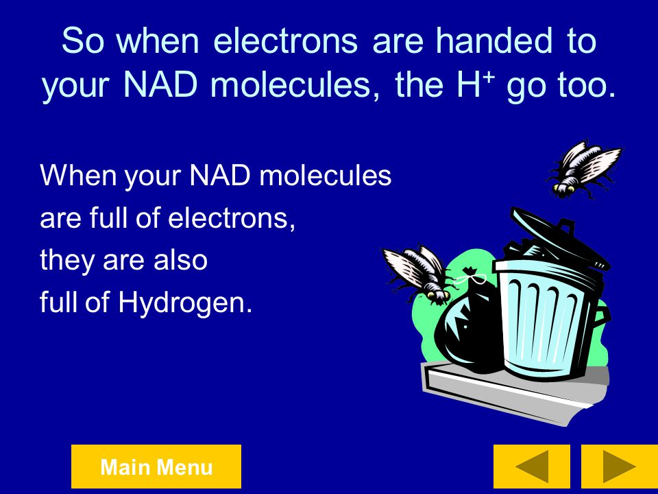 So when electrons are handed to your NAD molecules, the H+ go too.