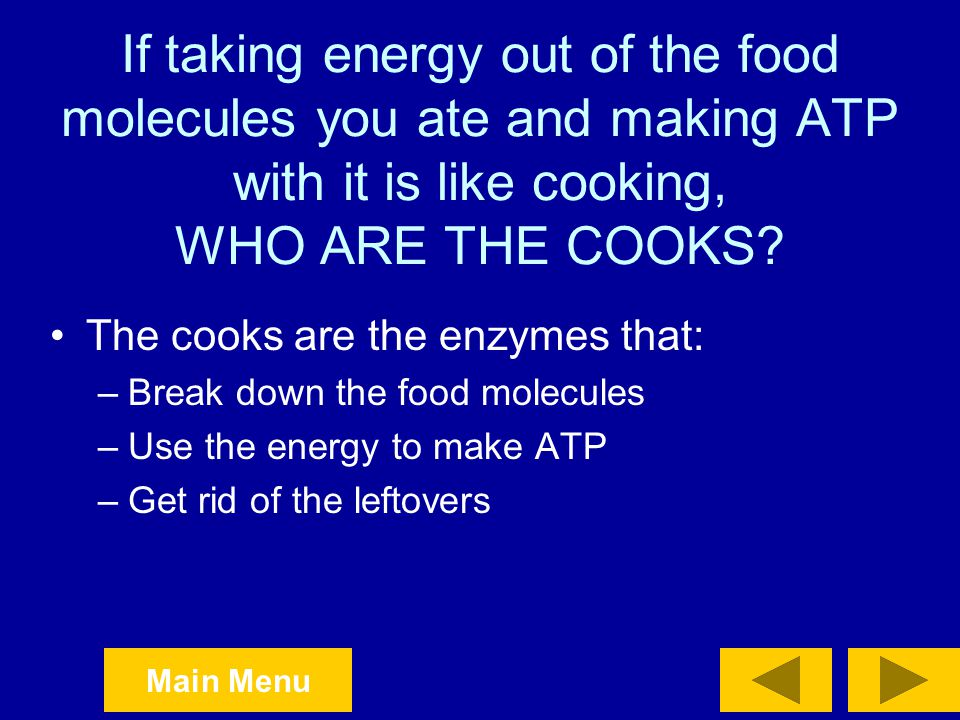 If taking energy out of the food molecules you ate and making ATP with it is like cooking, WHO ARE THE COOKS