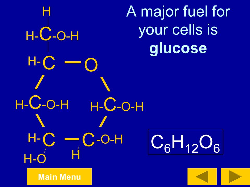 A major fuel for your cells is glucose