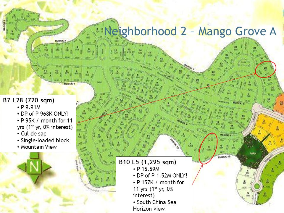 Neighborhood 2 – Mango Grove A