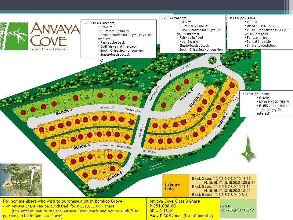 B1 L2 (594 sqm) P 8.52M. DP of P 832K ONLY! P 85K / month for 11 yrs (1st yr, 0% interest) Fairway in front.