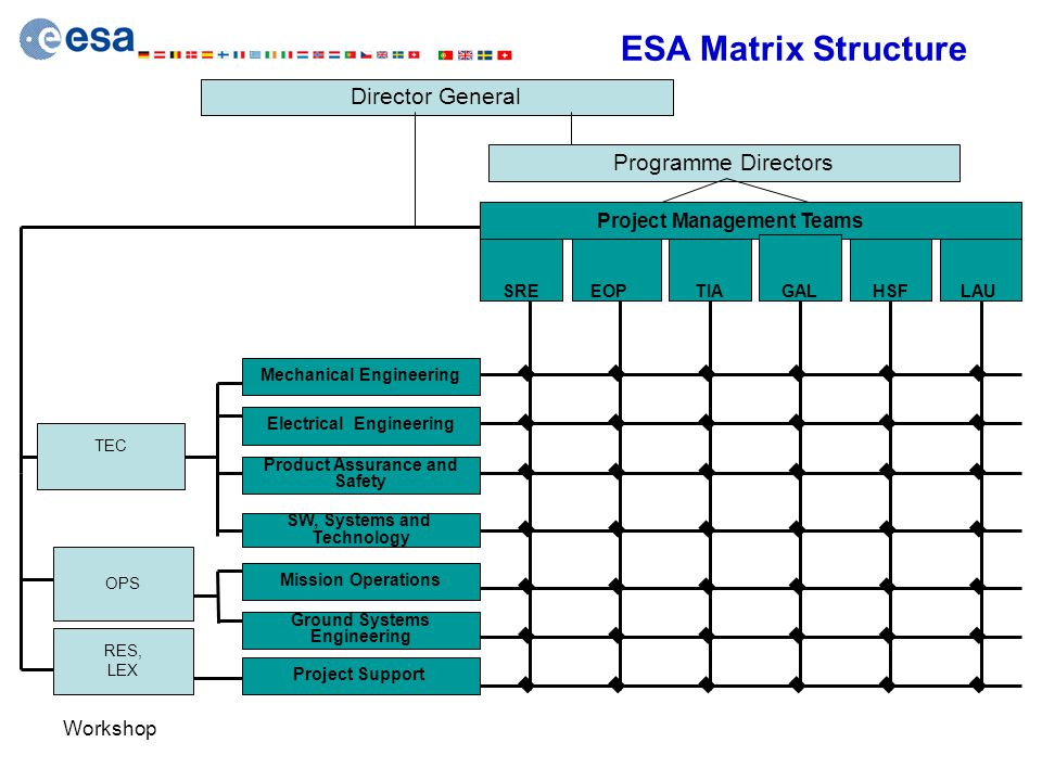 ESA Matrix Structure Director General Programme Directors