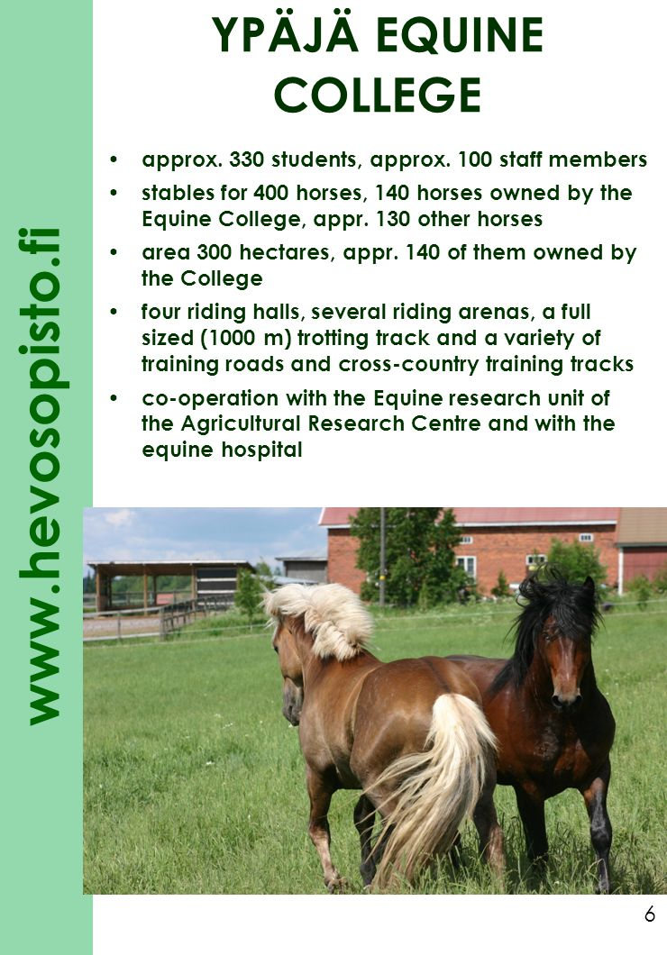YPÄJÄ EQUINE COLLEGE approx. 330 students, approx. 100 staff members