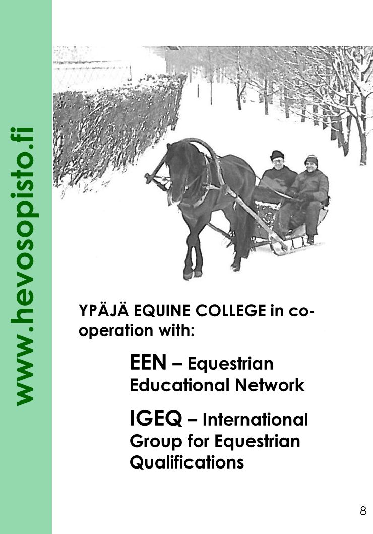 IGEQ – International Group for Equestrian Qualifications