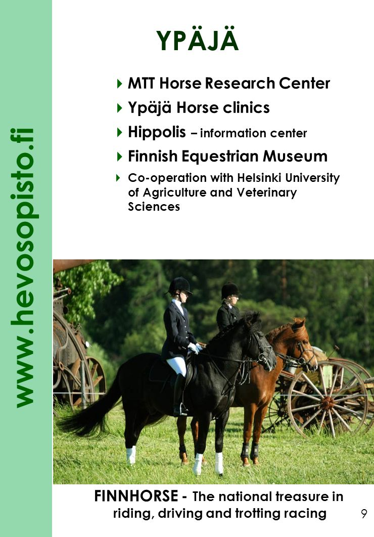 YPÄJÄ MTT Horse Research Center Ypäjä Horse clinics