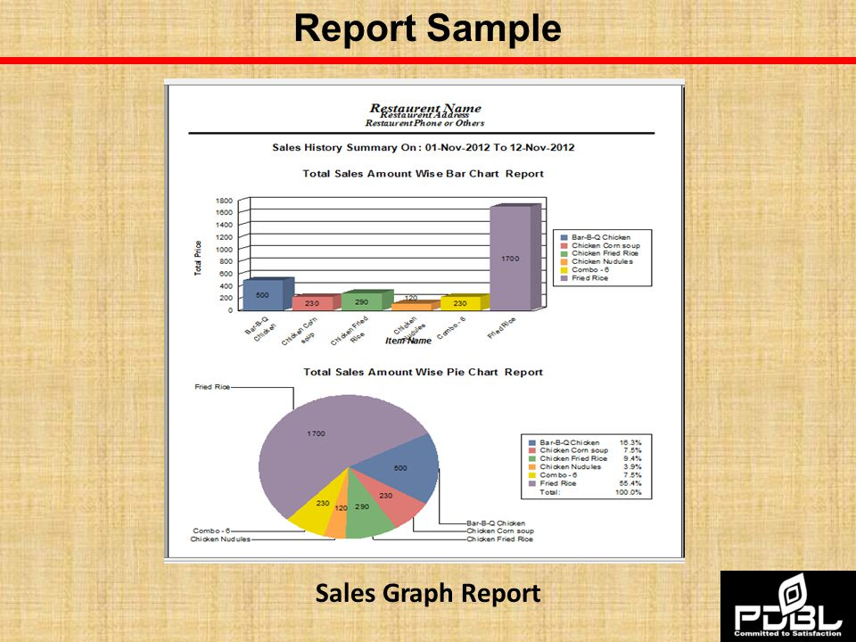 Report Sample Sales Graph Report