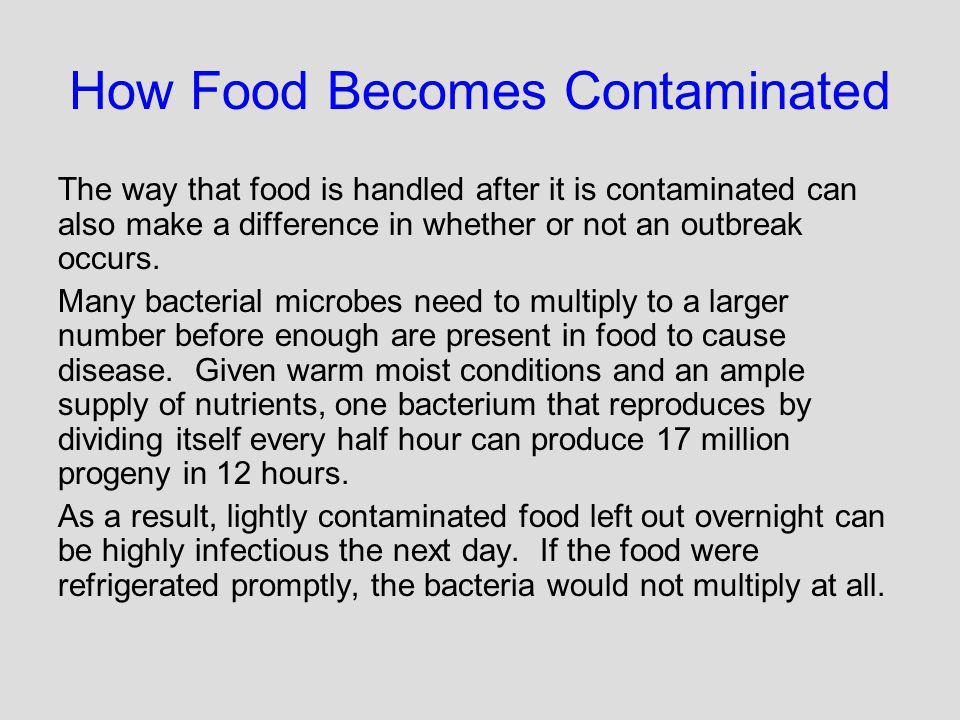 How Food Becomes Contaminated