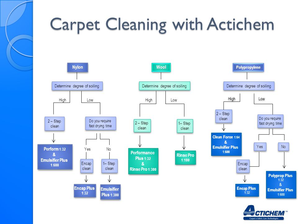 Carpet Cleaning with Actichem