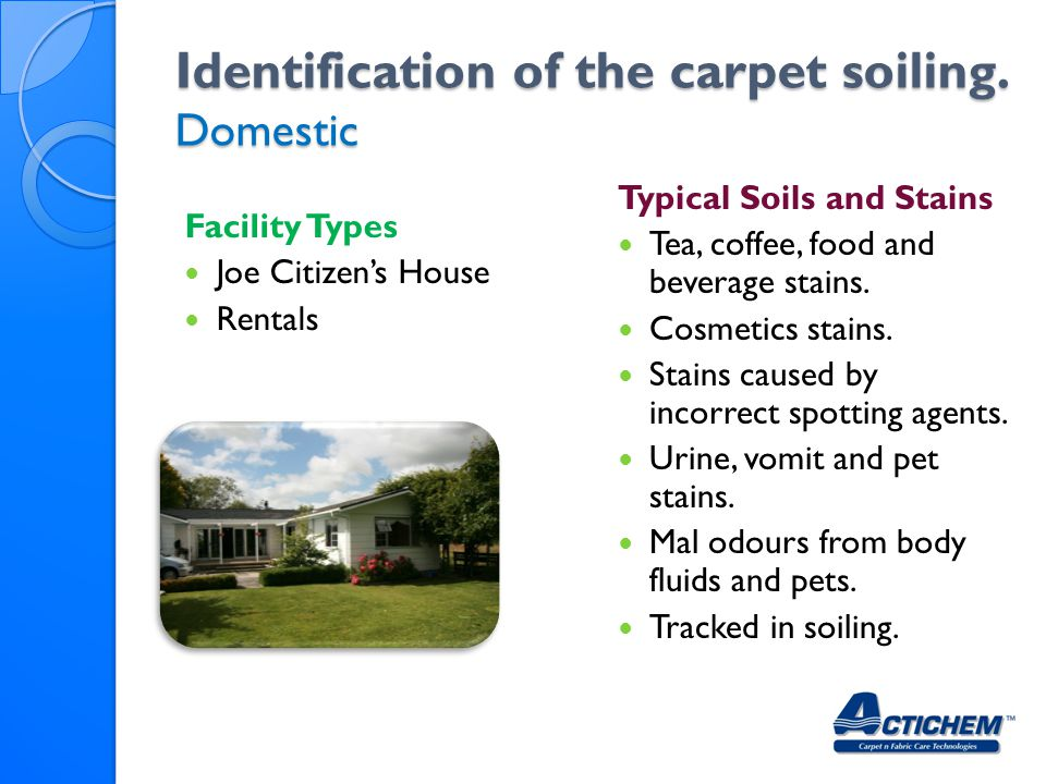 Identification of the carpet soiling. Domestic