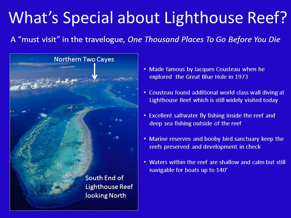 What's Special about Lighthouse Reef
