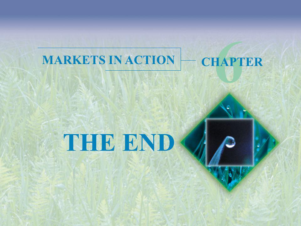 6 MARKETS IN ACTION CHAPTER THE END