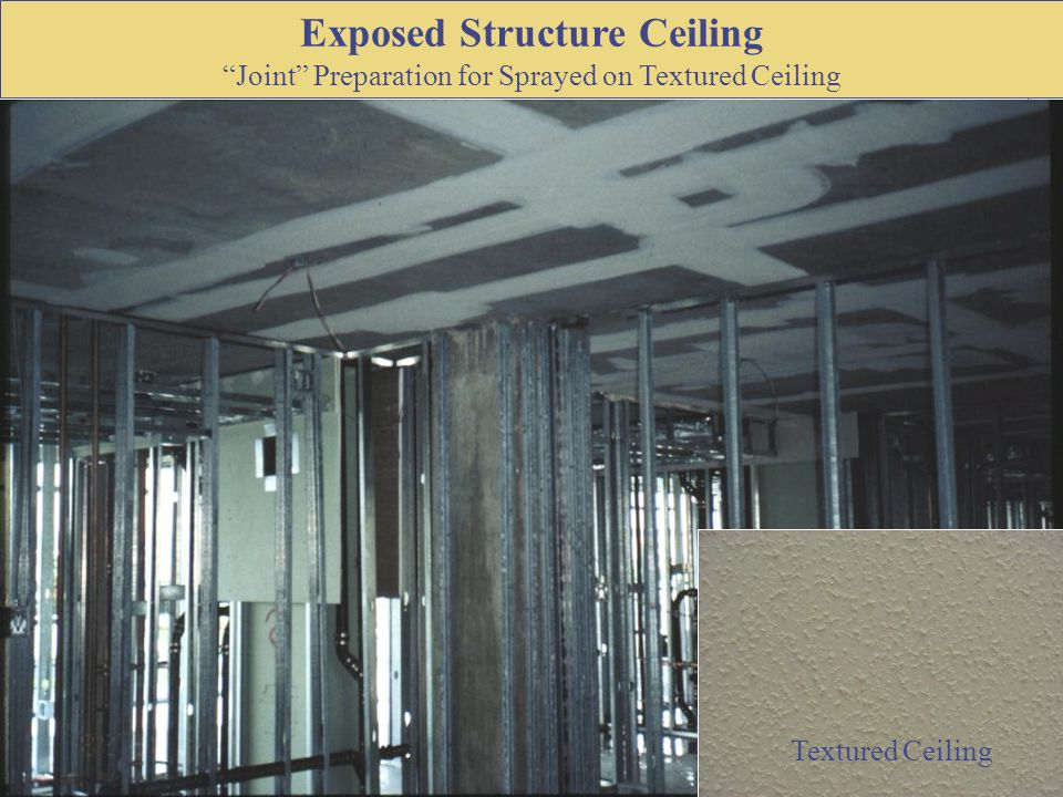 Exposed Structure Ceiling